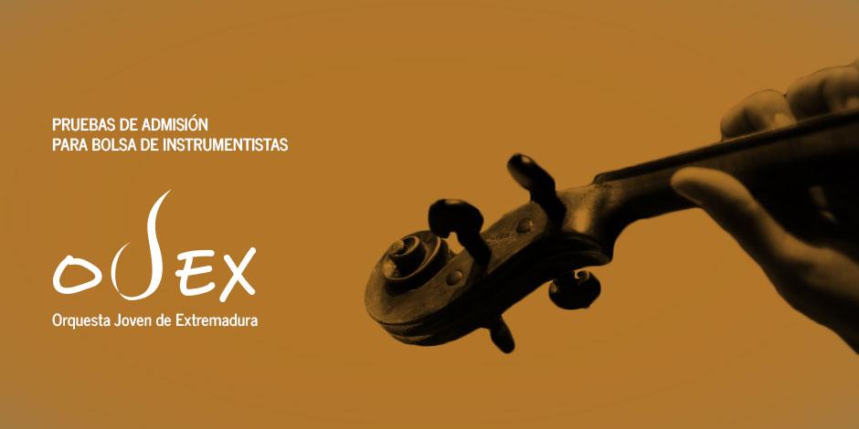 Convocatoria extraordinaria OJEX 2016