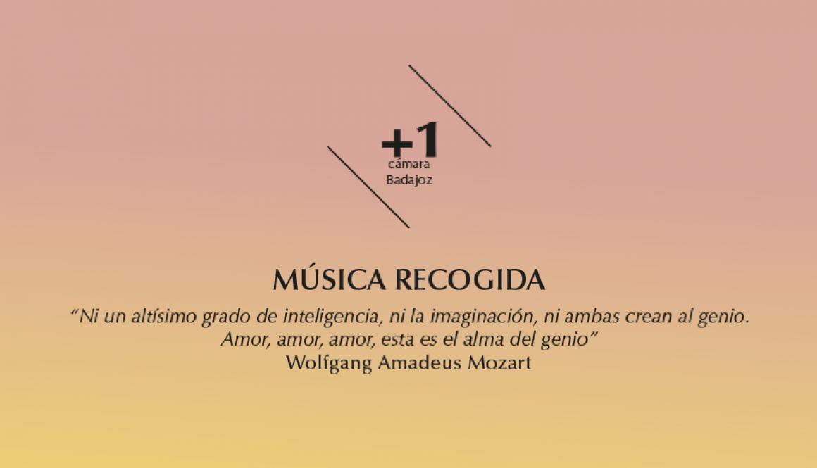 «Música recogida». 2015-2016 cámara 1