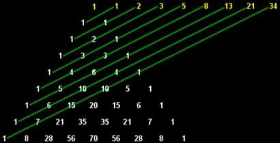 La sucesión Fibonacci en Disparos de luz